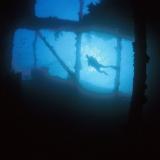 Wreck & Diver